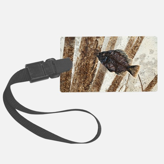 Priscacara fossil fish Luggage Tag