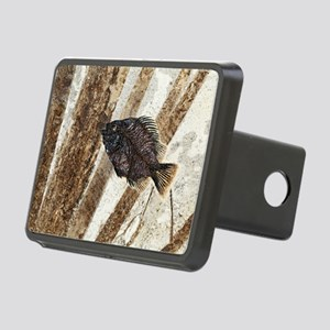 Priscacara fossil fish Rectangular Hitch Cover