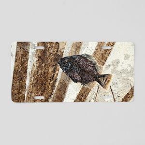 Priscacara fossil fish Aluminum License Plate