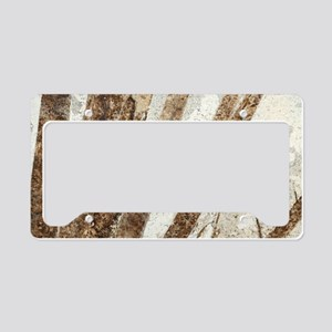 Priscacara fossil fish License Plate Holder