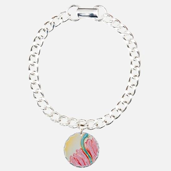 Artwork of hookworm clin Bracelet