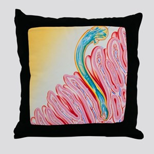 Artwork of hookworm clinging to intes Throw Pillow