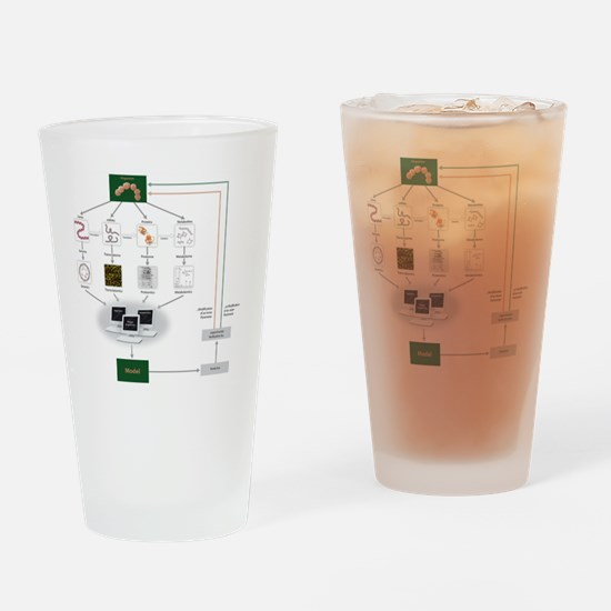 Systems biology, flow chart Drinking Glass