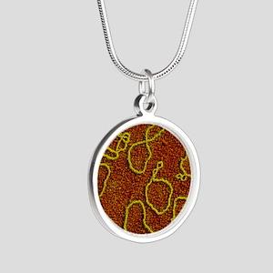 False-col TEM of plasmids of Silver Round Necklace