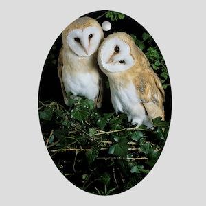 Barn owls Oval Ornament