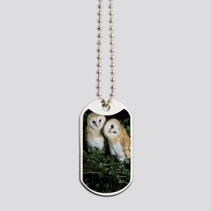 Barn owls Dog Tags