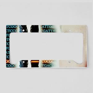 Eye colour genetics License Plate Holder