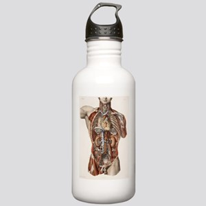 Cardiovascular system, Stainless Water Bottle 1.0L