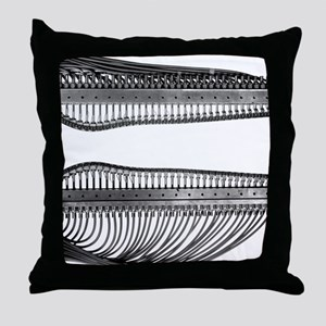 Wind tunnel nozzle, 1953 Throw Pillow