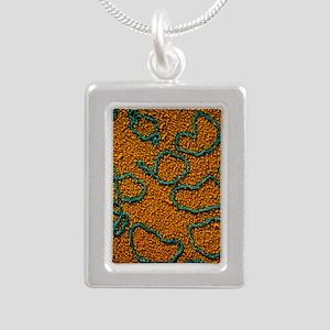 TEM of plasmids of bacte Silver Portrait Necklace