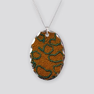 TEM of plasmids of bacterial D Necklace Oval Charm