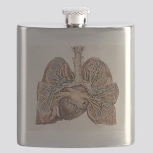 Heart and lungs, historical illustration Flask