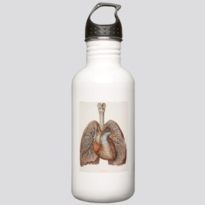 Heart and lungs, histo Stainless Water Bottle 1.0L