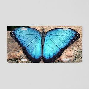 blue morpho Aluminum License Plate