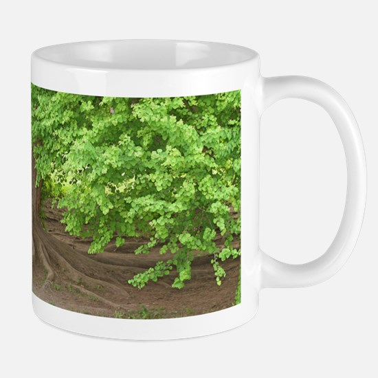 Old man tree Mug