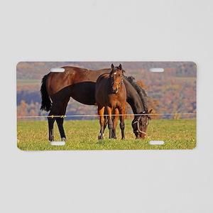 Mama Baby Horses Aluminum License Plate