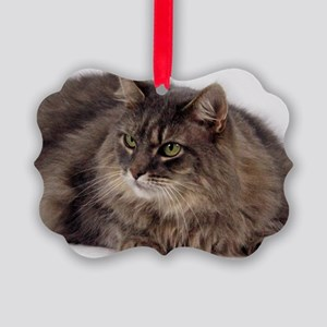 Maine Coon Picture Ornament