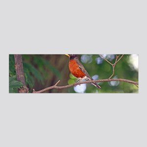 Robin 20x6 Wall Decal
