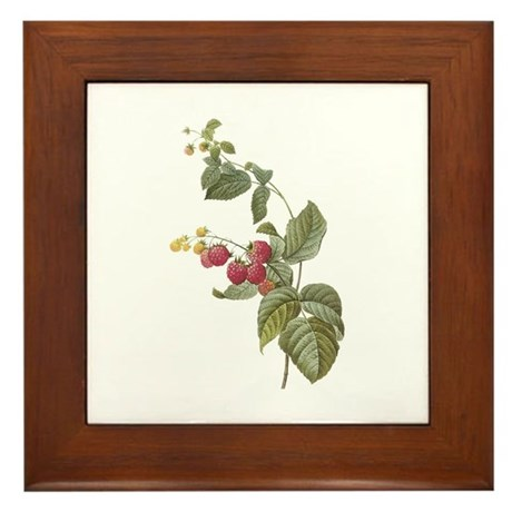 Vintage Strawberries Framed Tile