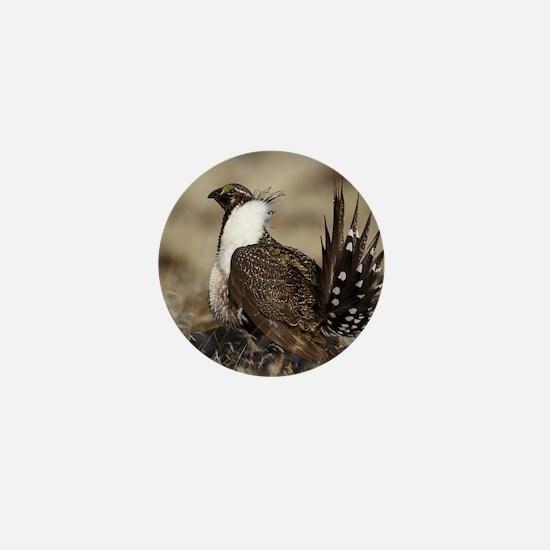 Sage Grouse Strut Mini Button