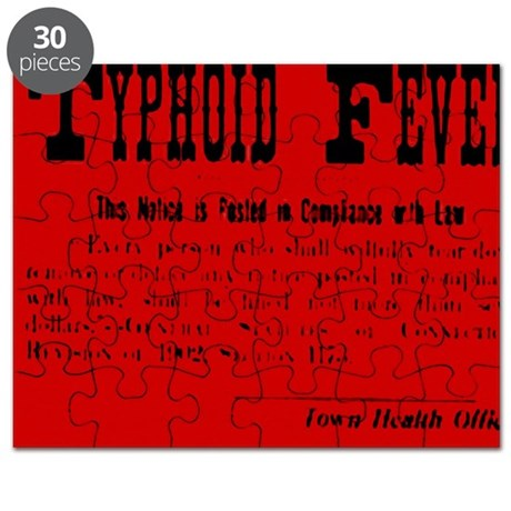 Typhoid Fever Warning Puzzle