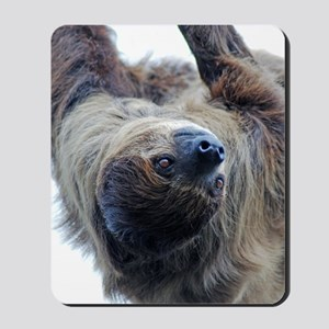 Sloth Twin Duvet Mousepad