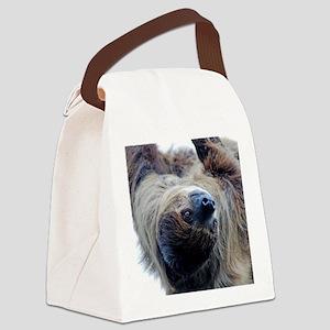 Sloth Twin Duvet Canvas Lunch Bag