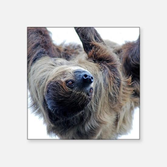 """Sloth Kingsize Duvet Square Sticker 3"""" x 3"""""""