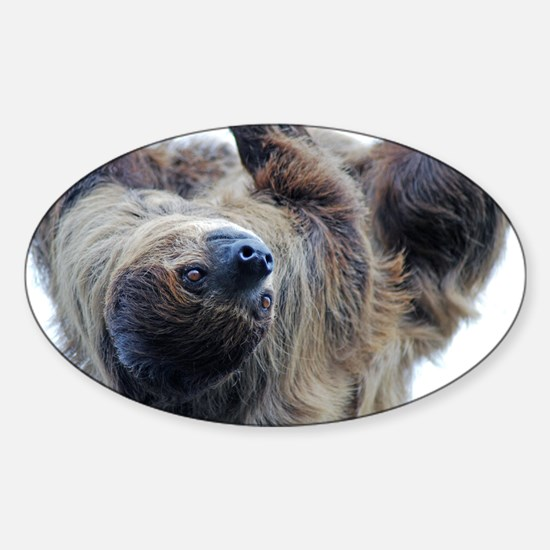 Sloth Pillow Case Sticker (Oval)