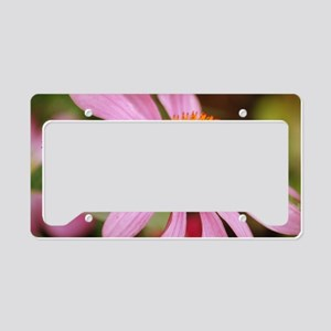 Purple Coneflower License Plate Holder