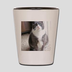 Morty Shot Glass