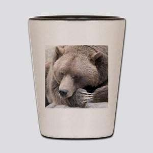 Lazy grizzly Shot Glass