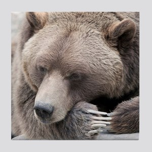 Lazy grizzly Tile Coaster