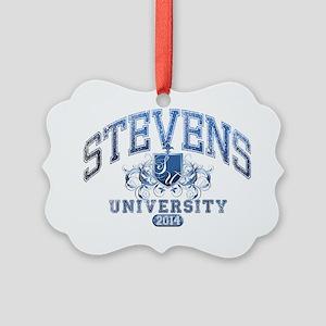 Stevens Last name University Clas Picture Ornament