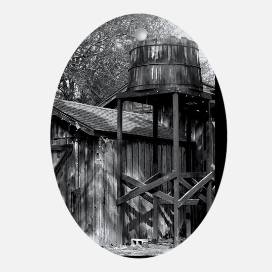 Cris Crosses - Digital Photography Oval Ornament