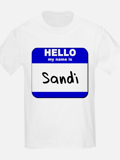 hello my name is sandi T-Shirt