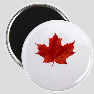 A Proud Canadian Magnet