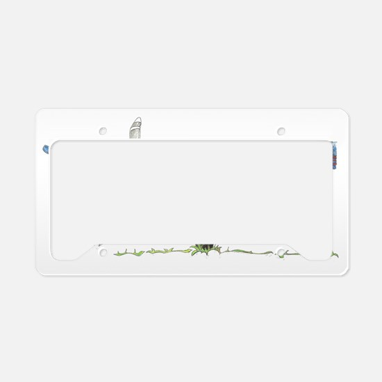 Cassna 180 License Plate Holder