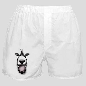 Bear Face 2 Boxer Shorts