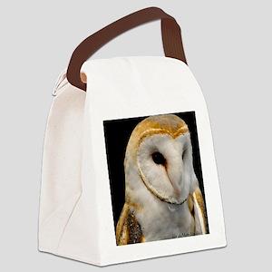 Barney The Barn Owl Canvas Lunch Bag