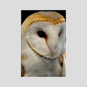 Barney The Barn Owl Rectangle Magnet