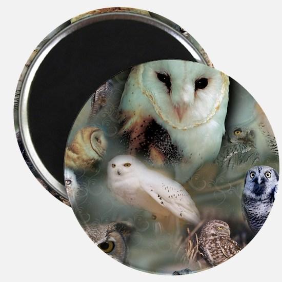 Happy Owls Magnet