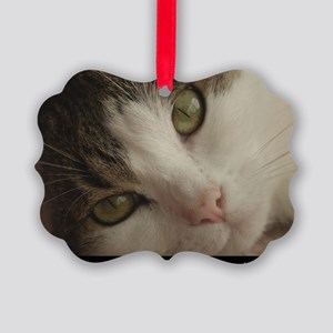 Leila Kitty Up Close and Personal Picture Ornament