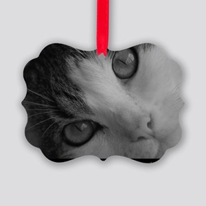 Leila Kitty in Black  White Picture Ornament