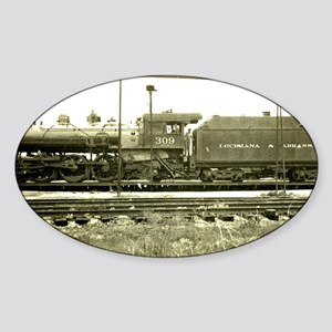 The Train Stop Sticker (Oval)