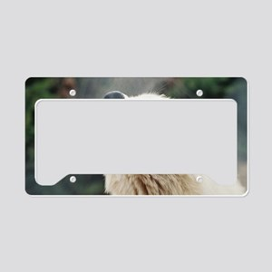 Where Are You!         photo  License Plate Holder