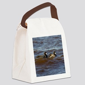 American Coots Canvas Lunch Bag