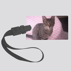 Beautiful Tabby Large Luggage Tag
