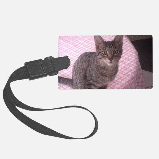 Beautiful Tabby Luggage Tag