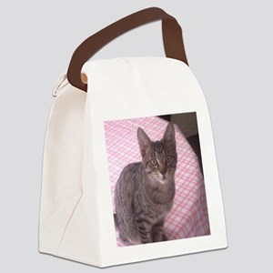Beautiful Tabby Canvas Lunch Bag
